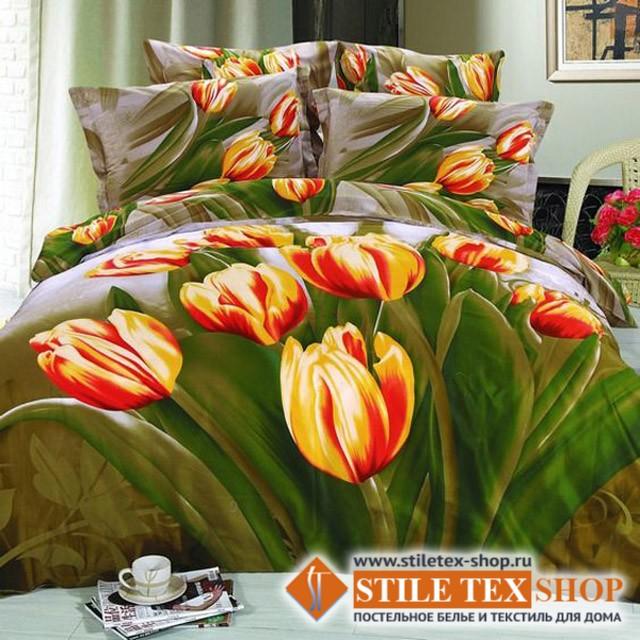 Постельное белье Stile Tex 3D Тюльпановый рай (размер евро плюс)